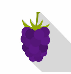 Fresh blackberry icon flat style vector