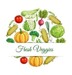 Fresh veggies poster of vegetables harvest sketch vector