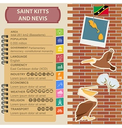 Saint kitts and nevis infographics statistical vector