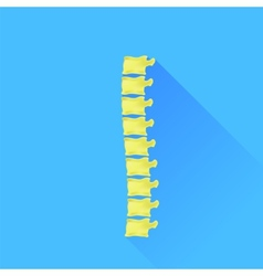 Backbone vector image