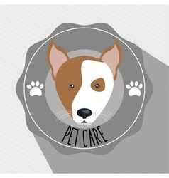 dog pet care icon vector image vector image