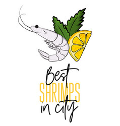 best shrimps in city seafood vector image