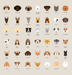 Dog breeds head set vector