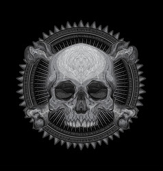 drawing skull head vector image