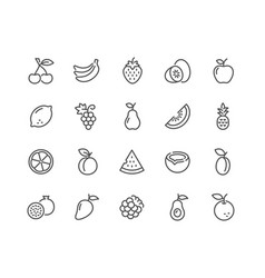 line fruits icons vector image