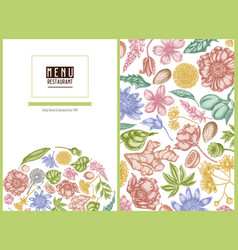 Menu cover floral design with pastel almond vector