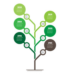 vertical green infographics the development and vector image