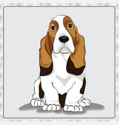 basset-hound cartoon dog vector image