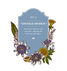 Badge design with colored dandelion ginger vector