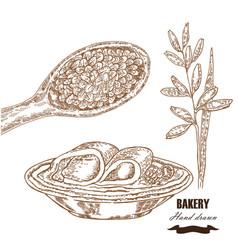 Cereals set hand drawn sketch oats breakfast in vector