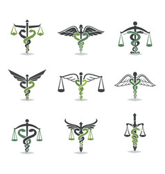 health law icon vector image
