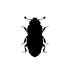 sap beetle icon vector image