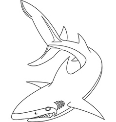 Shark outline vector