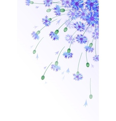 Vertical card with bluebottles vector image