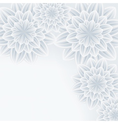 Grey background with flower chrysanthemum vector image vector image
