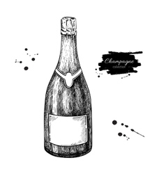Champagne bottle Hand drawn isolated vector