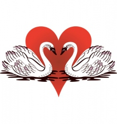 love swans vector image