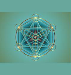 Seed life sacred geometry gold flower life mandala vector