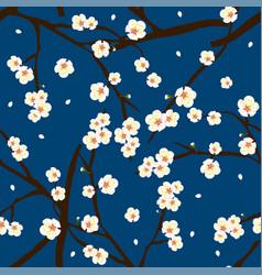 white plum blossom flower on indigo blue vector image vector image