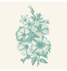 Begonia bouquet vector