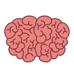 brain logo silhouette top view vector image