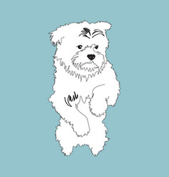 icon with cute little doggie vector image