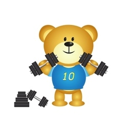 Bear cartoon boy playing barbell vector image vector image