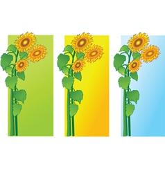 sun flowers vector image vector image