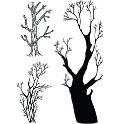 trees without leaves vector image vector image