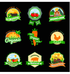 stevia and organic food label set farm fresh vector image