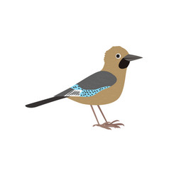 beautiful multi-colored bird isolated on white vector image