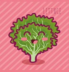 Fresh lettuce vegetable character vector