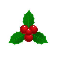 realistic hand drawn holly ilex branch with berry vector image