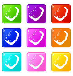 Spleen set 9 vector