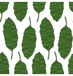 The leaves of the tropical palm trees Pattern vector image