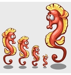 Funny red sea horse five icons of different sizes vector image vector image