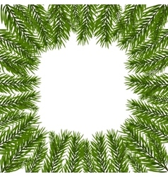 Green realistic fir branches spruce branch in a vector