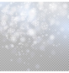 Bokeh light gray sparkles on transparency vector image vector image