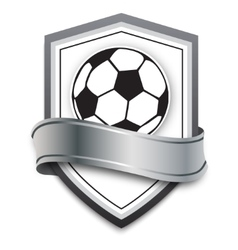 soccer ball on the silver background vector image