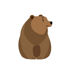 Bear forest animal isolated vector