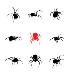 black widow spider in silhouette style vector image