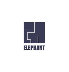 elephant logo template modern cube flat design vector image