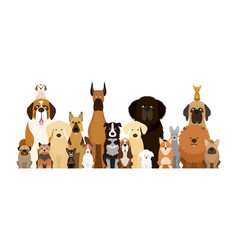 group of dog breeds vector image