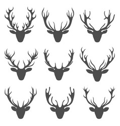 Set deer heads collection stag horns isolated on vector