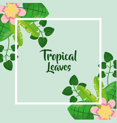 tropical leaves poster floral flower exotic vector image