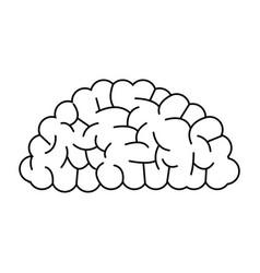 brain organ human intelligence concept outline vector image