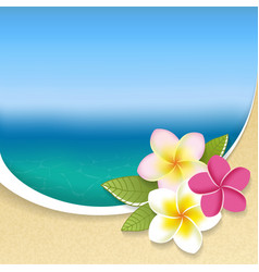 Plumeria flowers on a seaside view background vector image vector image