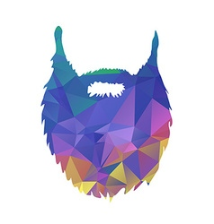 Abstract triangles low poly beard isolated on vector image