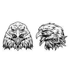 eagle heads front and side views vector image
