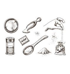 hand drawn sea salt salting crystals vector image